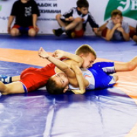 Open tournament in Greco - Roman wrestling