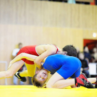 Open Republican freestyle wrestling tournament